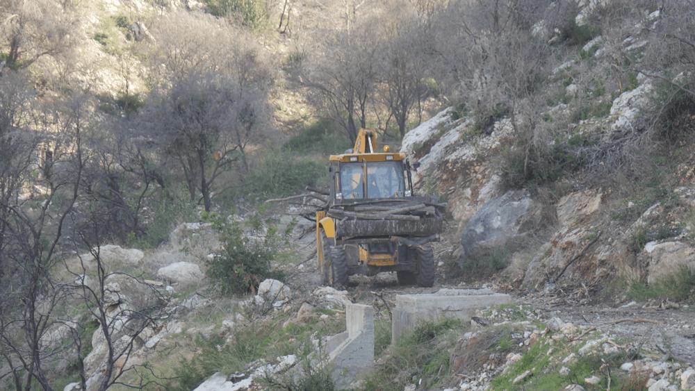 חיפה: כ – 4 מיליון ₪ יושקעו בניקוי ושיקום נחל אחוזה