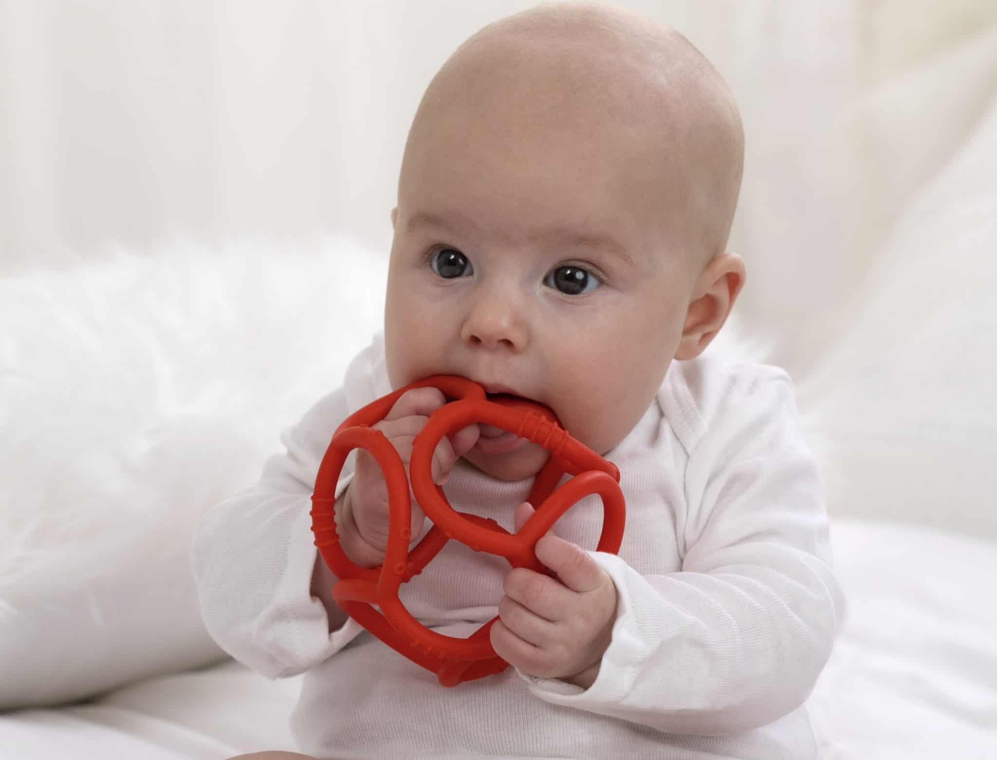 נשכן חדש לתינוקות בצורת כדור צבעוני