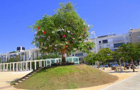 עץ החזיות בכיכר הבימה