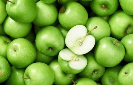 הקשר בין סיבים תזונתיים, אלוורה  ובריאות מערכת העיכול