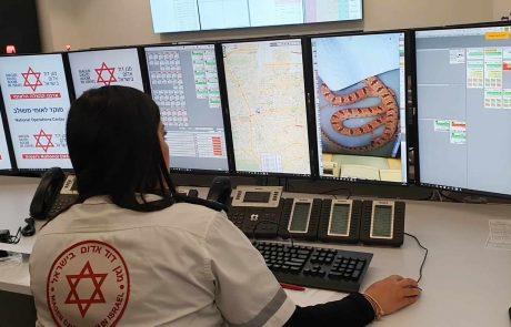 עלייה משמעותית במקרי הכשות נחשים בישראל