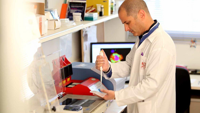 """רמב""""ם: החוקרים גילו מנגנון חדש של עמידות לטיפול בסרטן בלוטת התריס"""