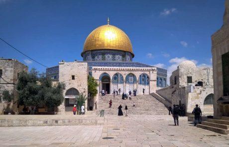 סוכות בירושלים: מחדשים את שירת הלווים