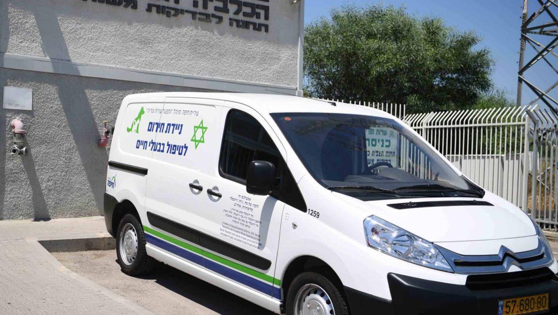 חיפה: אמבולנס חירום לטיפול בבעלי חיים פצועים