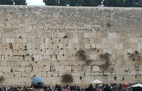 סיורי סליחות חווייתיים בירושלים ובכותל המערבי