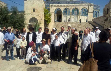 שמונה מאות יהודים כבר עלו  בשני ימי חול המועד להר הבית כהלכה