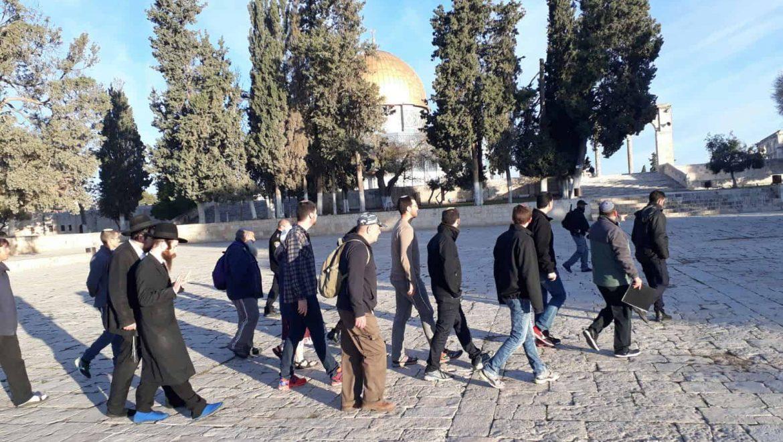 הר הבית בירושלים: תקדים ההר נפתח גם כשהכותל היה סגור