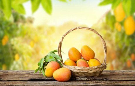 טיפ: כל הסיבות לרכוש סלסלת פירות לאנשים שקרובים אליכם