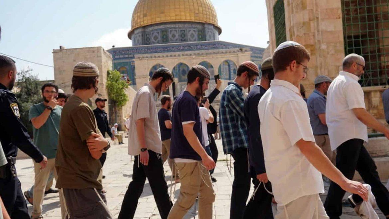 """הר הבית בירושלים: שנת תשע""""ח שיא השיאים…"""